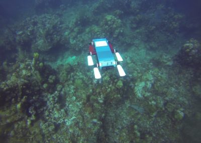 Autonomous Navigation for an Underwater Robot with Obstacle Avoidance
