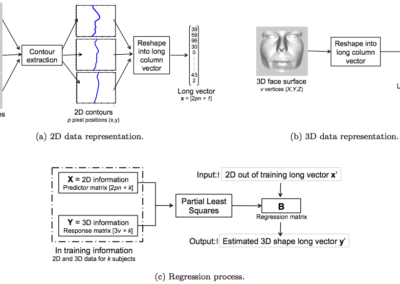 Statistical models of Shape and texture for face analysis
