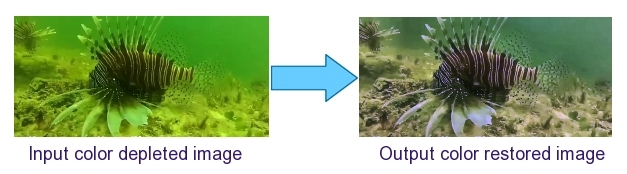 Color Adaptive Training for Underwater Color Restoration